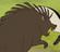 Mulan Porcupine