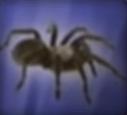 Spider-disneythinkfast