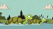 TLH Turtles