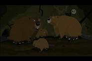 North American Beaver (Wild Kratts)