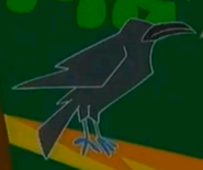 STNLY Crow