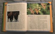 Scholastic Encyclopedia Of Animals (5)