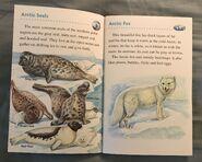 Animals of the Polar Regions (11)