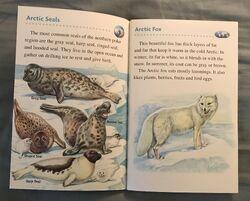 Animals of the Polar Regions (11).jpeg