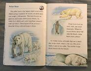 Animals of the Polar Regions (8)