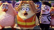 Birds (The Angry Birds Movie)