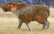 Capybara switch zoo