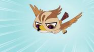 Hawk (LPS)