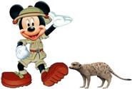 Mickey Timon
