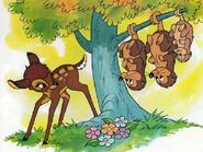 Possums-in-baby-animals-from-disney-discovery-series