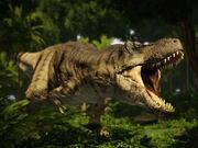 Tyrannosaurus 2.jpg