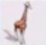 Giraffe-rct3