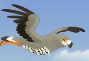 Harrier Hawk TLG