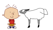 Stanley Griff meets Domestic Sheep