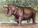 Archaeopotamus