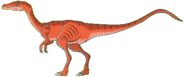 Coelophysis Math vs Dinosaurs