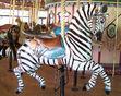 Erie Zoo Carousel Zebra