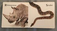 James Balog's Animals A to Z (10)