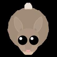 Mopeio Rabbit