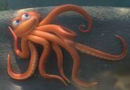 Octopus jungle beat