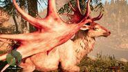 Red Rare Tall Deer