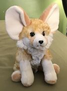 Rosie the Fennec Fox