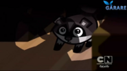 Scared little raccoon