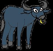 Taurus (C03000)