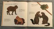 Can an Aardvark Bark? (4)