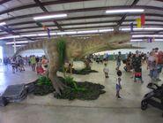 DinoStroll Carnotaurus