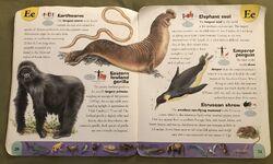 Extreme Animals Dictionary (7).jpeg