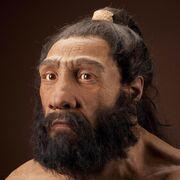 Neanderthalensis JG Recon Head CC 3qtr lt sq.jpg