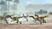 Pack of Velociraptors