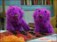 Pip and Pop Are Both Purple Otters