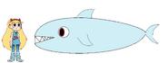 Star meets Great White Shark
