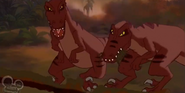 Tarzan Raptors