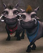 Warthog (Jock the Hero Dog)
