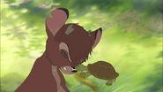 Bambi2-disneyscreencaps.com-7319
