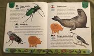 Deadly Creatures Dictionary (24)
