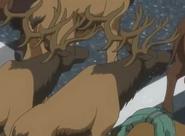 JEL Elk