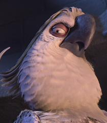 Nigel (Rio)