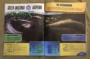 Predator Splashdown (16)