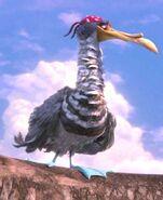 Silas the Bird