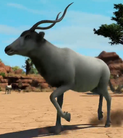 Addax-zootycoon3.png