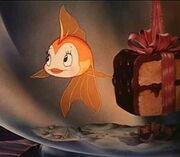 Cleo the Fish.jpg