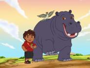 GDG! Hippo