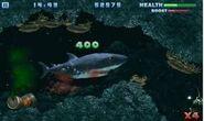 Hungry shark whitedsfg