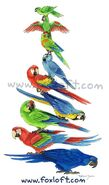 Macaw Stack