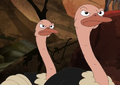 Phineas and Ferb Ostriches