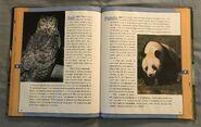 Scholastic Encyclopedia Of Animals (36)